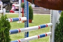 Mostre o salto Foto de Stock Royalty Free