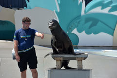 Mostri con i leoni marini nell'acquario a New York Immagini Stock Libere da Diritti