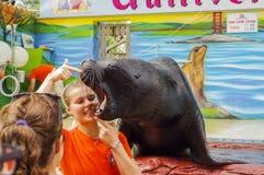 Mostri con un leone marino Fotografie Stock Libere da Diritti