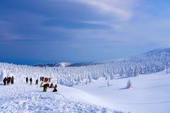 Mostri della neve del Mt Zao in Yamagata, Giappone immagine stock