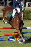 Mostri il cavallo ed il cavaliere di salto Immagine Stock