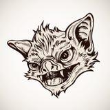 Mostro capo del pipistrello Fotografia Stock Libera da Diritti