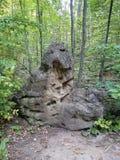Mostro di pietra di silvicoltura Immagini Stock Libere da Diritti