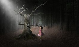 Mostro diabolico di Halloween dell'albero, ragazza, surreale immagini stock libere da diritti