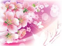 mot blommaskyen Arkivfoton