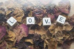 Mot cubique d'amour de jour de valentines Image stock