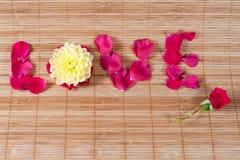 Mot d'amour écrit avec des pétales de fleur Photographie stock libre de droits