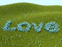 Mot d'amour de myosotis des marais et herbe verte Images libres de droits