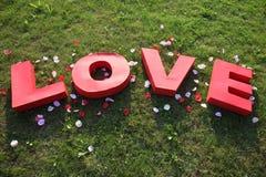 Mot d'amour de papier sur l'herbe Photos stock