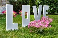 Mot d'amour dehors Grandes lettres en plastique blanches sur l'herbe Image stock