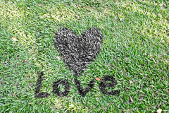 Mot de coeur et d'amour sur des herbes Images stock