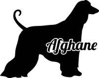 Mot de silhouette de lévrier afghan vrai en allemand Image stock