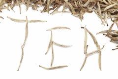 Mot de thé des bourgeons blancs photographie stock libre de droits