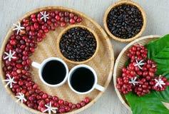 Mot efterkrav av kafét, böna, kopp kaffe, blad, blomma royaltyfri foto