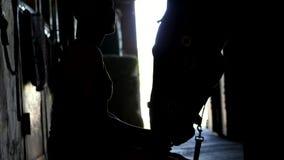 Mot ljuset, översikter, diagram av en flicka och en häst flickan matar hennes häst från handen I stallet arkivfilmer