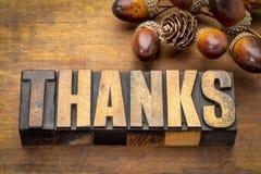 Mot merci - concept de thanksgiving photo stock