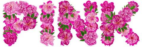Mot rose pour toujours Image stock