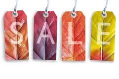 mot rouge de vente de lames d'automne Photos stock