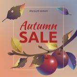 mot rouge de vente de lames d'automne Disposition carrée avec des pommes, des feuilles de jaune et le texte illustration de vecteur