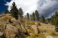mot vända för trees för bergsky stormigt Royaltyfri Fotografi