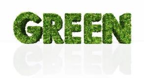 Mot vert complètement d'herbe et de fleurs Photographie stock libre de droits