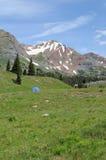 Mota con cresta -- Paria en las montañas Foto de archivo