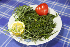 Motar, Mediterranean Sea fennel salad. Motar, traditional Mediterranean Sea fennel or Rock Sampire salad decorated with rosemary, fresh organic tomato and lemon Stock Images