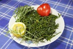 Motar, salade de fenouil de la mer Méditerranée images stock