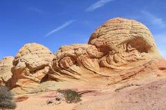 Motas del coyote: Tres cráneos de la piedra arenisca Foto de archivo libre de regalías