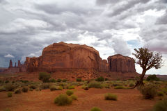 Motas en el valle del monumento Fotografía de archivo libre de regalías