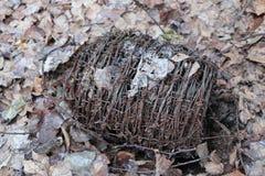 Motek ośniedziały stary drut kolczasty kłama w lesie na suchych liściach Zdjęcia Stock