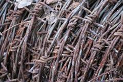 Motek ośniedziały stary drut kolczasty kłama w lesie na suchych liściach Fotografia Stock