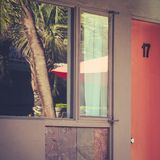 Palm Trees Reflected in Motel Room Window. Motel Room Window With Palm Trees and Parasol Reflection Stock Photography