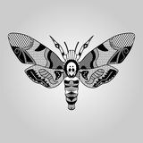 Moth Acherontia atropos, black and white drawing, hatched and textured parts on wings, tattoo template Royalty Free Stock Images