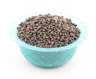 Moth Beans  Vigna aconitifolia Royalty Free Stock Image