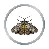 Moth icon in cartoon style isolated on white background. Insects symbol stock vector illustration. Stock Photos
