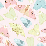 Moth pattern. Vintage style seamless natural ornate pattern with moths and butterflies. Can be used as a textile, wrapping, greeting, invitation or holiday card Royalty Free Stock Image
