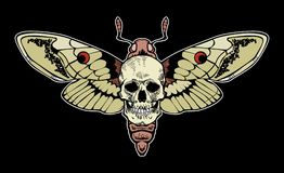Moth skull – stock illustration – stock illustration file. N file vector illustration
