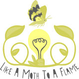 Moth To A Flame Royalty Free Stock Photography