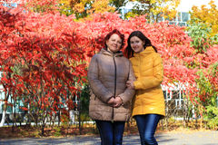 Mother and adult daughter Stock Image