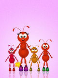 Mother ant Stock Image