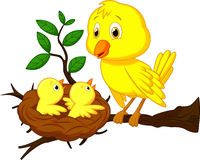 Mother and baby bird cartoon Stock Photography