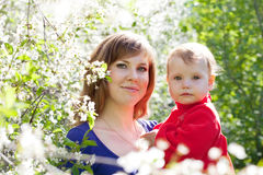 Mother and baby  in blossoming garden Stock Images