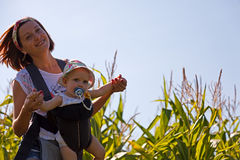 Mother with baby on the corn field. Beautiful women turns little baby in backpack on the corn field Stock Images