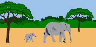 Mother and baby elephant. Illustration of a mother and baby elephant walking in an african scenery Royalty Free Stock Photo