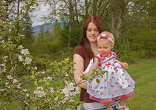 Mother and Baby Explore Apple Blossoms. This young mother and baby daughter and learning and exploring an apple tree in bloom outside in the springtime.  A happy Royalty Free Stock Photos