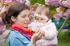 Mother with baby in the garden. Mother with baby in spring garden Stock Photography