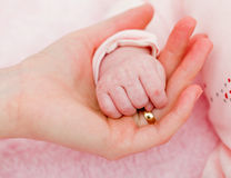 Mother and baby hands Stock Images