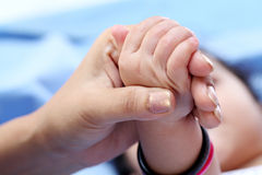 Mother and baby hands Stock Photo