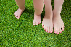 Mother and baby legs standing  on grass Stock Photos